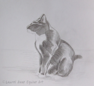 Completed cat sketch