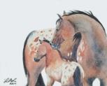 Mother's Love by Laurel Anne Equine Art