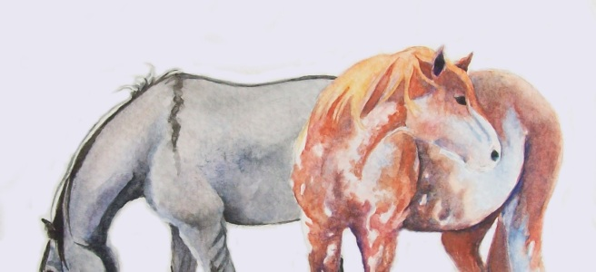 """""""Sabino and Grulla"""" by Laurel Anne Equine Art"""
