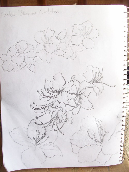 Azalea Stencil Sketch by Laurel Anne Equine Art