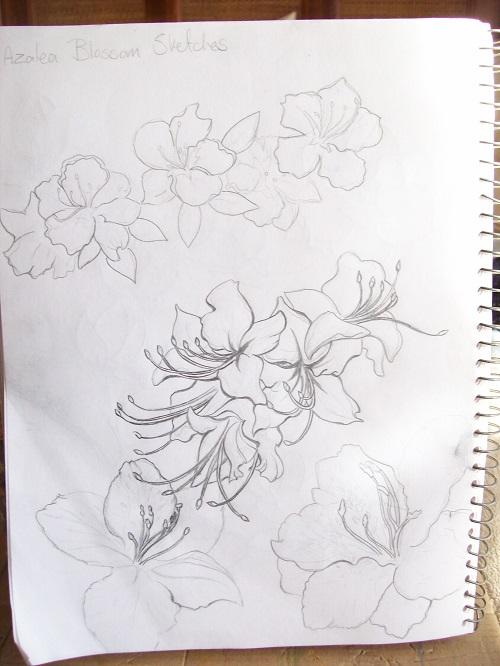 Azalea Stencil Sketch by Laurel Anne Equine Art