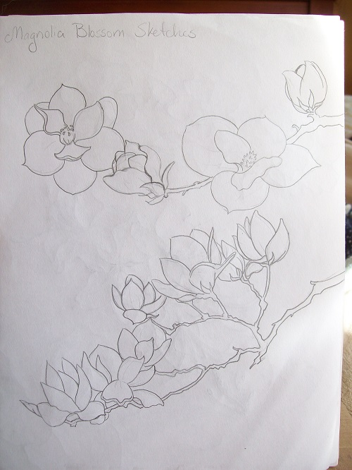 Magnolia Sketch by Laurel Anne Equine Art