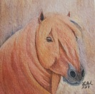 Chestnut Pony Original Watercolor Painting by Laurel Anne Equine Art